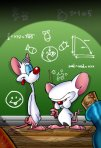 Pinky_and_the_brain_by_themico